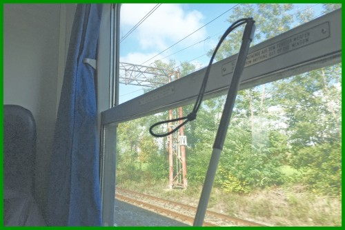 il mio bastone bianco in treno